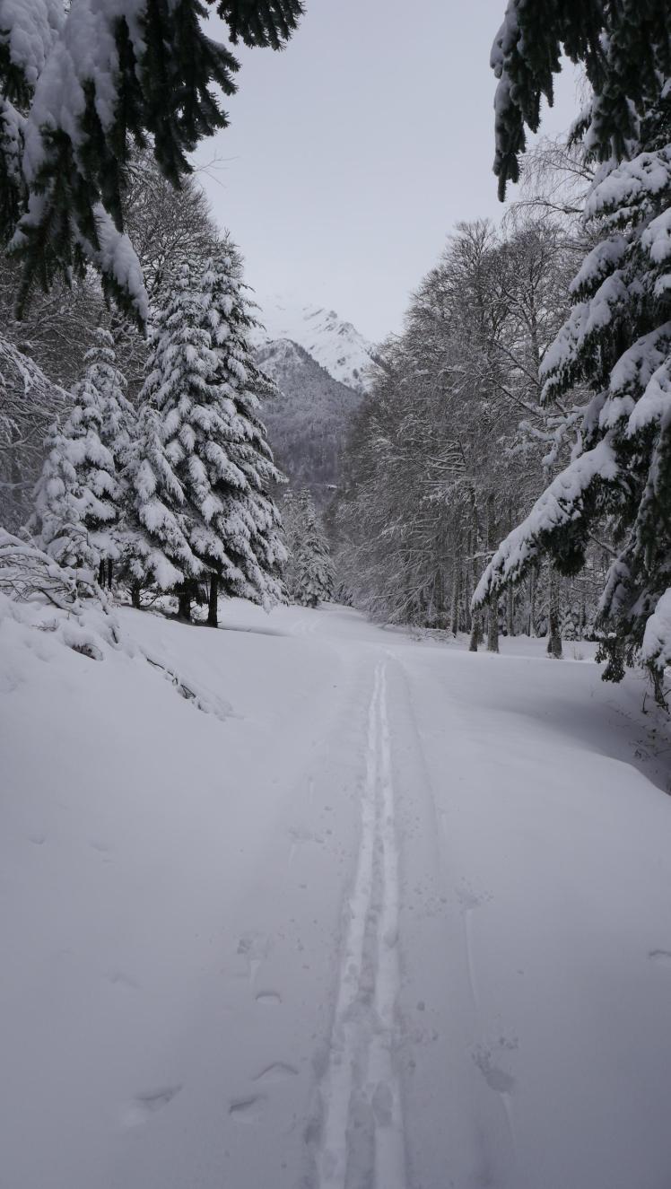 Sous la neige10