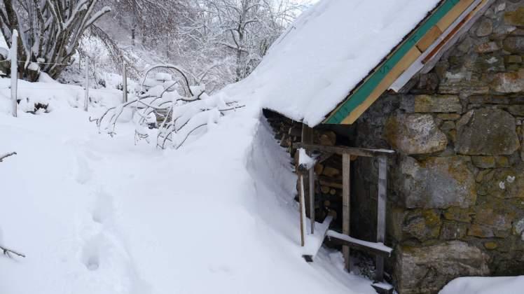 Sous la neige12
