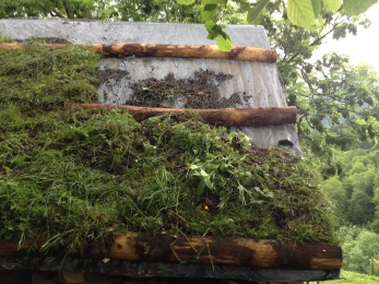 les pannes servent à retenir les plaques d'herbe