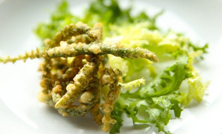 tempura d'achillée millefeuille