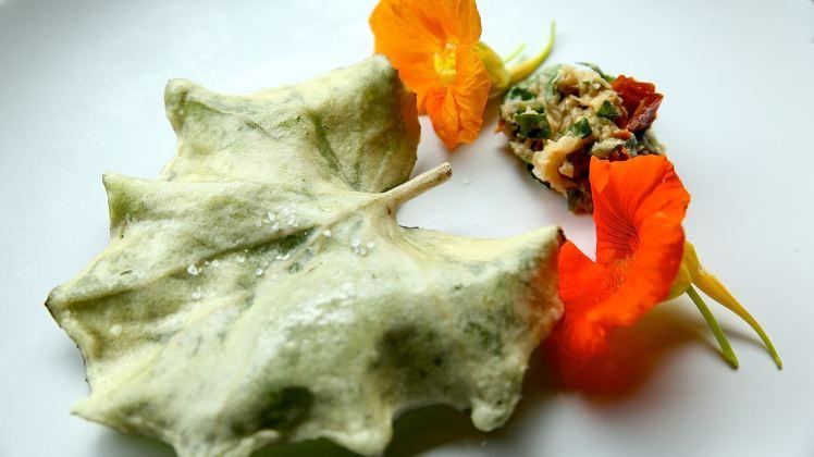 tempura tussilage